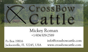CrossBow Cattle Biz Card Front with bleed